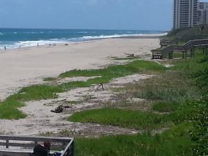MacArthur Park Beach